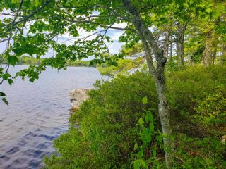 Photo 18: Lot 101 Dorey Mills Road in Clearland: 405-Lunenburg County Vacant Land for sale (South Shore)  : MLS®# 202119645