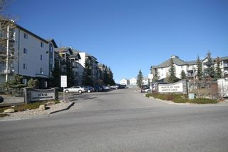 Photo 39: 509 55 ARBOUR GROVE Close NW in Calgary: Arbour Lake Apartment for sale : MLS®# A1096357