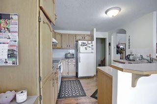 Photo 11: 8230 Saddleridge Drive NE in Calgary: Saddle Ridge Detached for sale : MLS®# A1085120