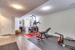 Photo 38: 174 EVERWILLOW Close SW in Calgary: Evergreen House for sale : MLS®# C4130951