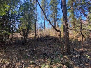 Photo 11: Lot L VIEW RIDGE ROAD in Nelson: Vacant Land for sale : MLS®# 2460797