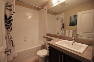 """Photo 10: 19 21867 50 Avenue in Langley: Murrayville Townhouse for sale in """"Winchester"""" : MLS®# R2256896"""