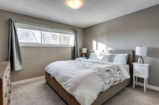 Photo 16: 4816 30 Avenue SW in Calgary: Glenbrook Detached for sale : MLS®# A1072909