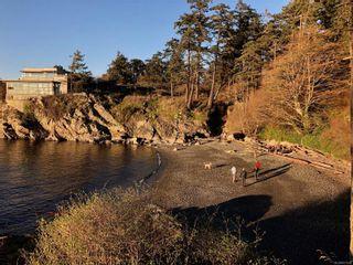 Photo 6: 445 Constance Ave in : Es Saxe Point House for sale (Esquimalt)  : MLS®# 871592
