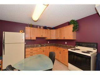 Photo 47: 148 GLENEAGLES Close: Cochrane House for sale : MLS®# C4010996