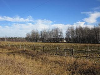 Photo 34: NW 24-54 RR 131: Niton Junction Rural Land for sale (Edson)  : MLS®# 32590