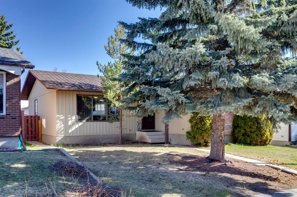 Main Photo: 11 Bedwood Place NE in Calgary: Beddington Heights Detached for sale : MLS®# A1100658
