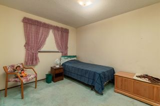 Photo 9: 55416 RGE RD 225: Rural Sturgeon County House for sale : MLS®# E4257944