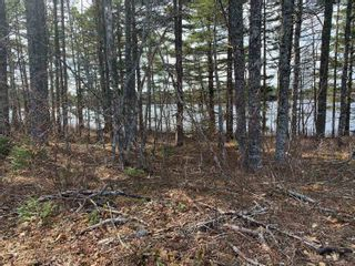 Photo 8: Lot E Hebb Road in Wileville: 405-Lunenburg County Vacant Land for sale (South Shore)  : MLS®# 202106726