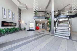 Photo 19: 303 4075 CLOVER BAR Road: Sherwood Park Condo for sale : MLS®# E4251093