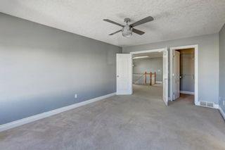Photo 19: 158 Saddlemont Boulevard NE in Calgary: Saddle Ridge Detached for sale : MLS®# A1145866