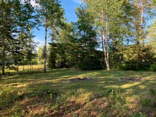 Photo 6: Lot 31 Highway 14 in Nine Mile River: 105-East Hants/Colchester West Vacant Land for sale (Halifax-Dartmouth)  : MLS®# 202118383