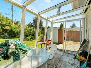 Photo 17: 3205 Carman St in : SE Camosun House for sale (Saanich East)  : MLS®# 878227