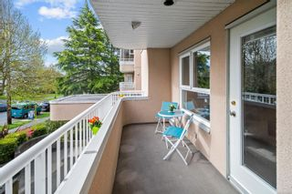 Photo 16: 205 456 Linden Ave in : Vi Fairfield West Condo for sale (Victoria)  : MLS®# 874426