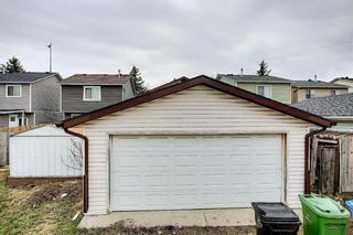 Photo 43: 142 Martindale Boulevard NE in Calgary: Martindale Detached for sale : MLS®# A1111282