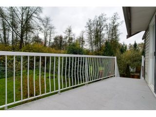 Photo 18: 19916 FAIRFIELD Avenue in Pitt Meadows: South Meadows House for sale : MLS®# R2010942