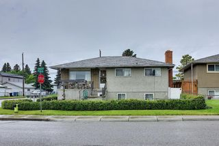 Photo 48: 1839 38 Street SE in Calgary: Forest Lawn Detached for sale : MLS®# A1147912