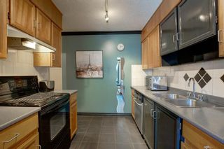 Photo 9: 203 917 18 Avenue SW in Calgary: Lower Mount Royal Apartment for sale : MLS®# A1099255