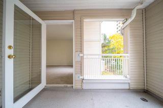 Photo 22: 206 10038 150 STREET in Surrey: Guildford Condo for sale (North Surrey)  : MLS®# R2512832