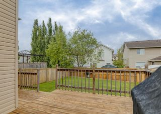 Photo 33: 368 Cranfield Gardens SW in Calgary: Cranston Detached for sale : MLS®# A1118684