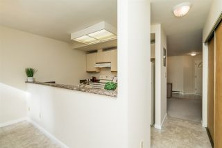 """Photo 22: 5 2223 ST JOHNS Street in Port Moody: Port Moody Centre Townhouse for sale in """"PERRY'S MEWS"""" : MLS®# R2542519"""