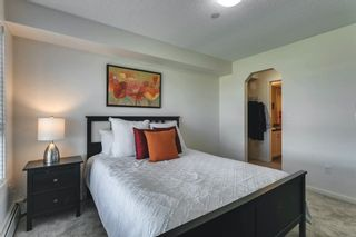 Photo 25: 2207 279 Copperpond Common SE in Calgary: Copperfield Apartment for sale : MLS®# A1119768