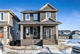 Photo 1: 163 Evanscrest Place NW in Calgary: Evanston Detached for sale : MLS®# A1065749