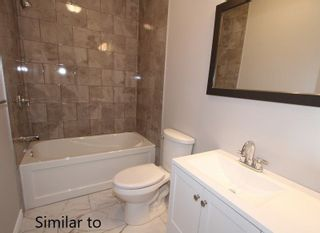 Photo 13: 29 Armitage Avenue in Kawartha Lakes: Rural Eldon House (Bungalow-Raised) for sale : MLS®# X4385316
