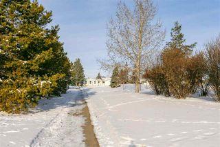 Photo 29: 5308 138A Avenue in Edmonton: Zone 02 House for sale : MLS®# E4221453