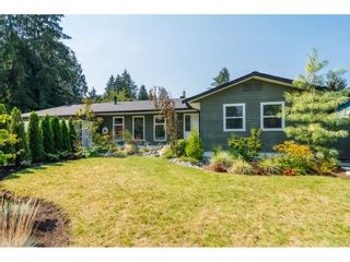 """Photo 1: 4529 207 Street in Langley: Langley City House for sale in """"Mossey/Uplands"""" : MLS®# R2300781"""