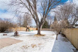 Photo 17: 617 Cathcart Street in Winnipeg: Charleswood Residential for sale (1G)  : MLS®# 1806088