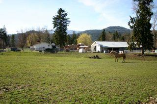 Photo 33: 21 McManus Road: Grindrod House for sale (Shuswap Region)  : MLS®# 10114200