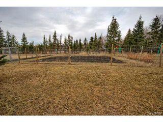 Photo 18: 68025 Deacon Road in WINNIPEG: Anola / Dugald / Hazelridge / Oakbank / Vivian Residential for sale (Winnipeg area)  : MLS®# 1506931