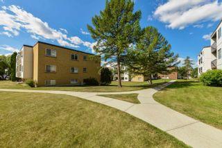 Photo 38: 205 11430 40 Avenue in Edmonton: Zone 16 Condo for sale : MLS®# E4258318