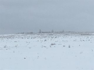 Photo 40: RR74 Twp 514: Rural Parkland County Rural Land/Vacant Lot for sale : MLS®# E4183435