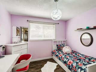 Photo 24: 106 Abalone Place NE in Calgary: Abbeydale Semi Detached for sale : MLS®# A1039180