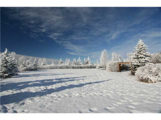 Photo 20: 100 WESTVIEW Estates in CALGARY: Rural Rocky View MD Residential Detached Single Family for sale : MLS®# C3544294
