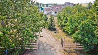 Photo 12: 264079 Township Road 252: Rural Wheatland County Detached for sale : MLS®# A1135145