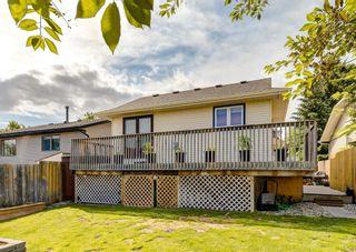 Photo 47: 12 Macewan Park Link NW in Calgary: MacEwan Glen Detached for sale : MLS®# A1121095