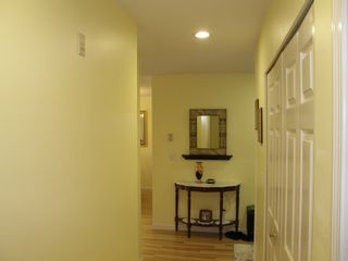Photo 37: 307 19121 FORD ROAD in EDGEFORD MANOR: Home for sale : MLS®# R2009925