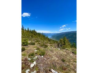 Photo 59: DL 1752 GIVEOUT CREEK FOREST SERVICE ROAD in Nelson: Vacant Land for sale : MLS®# 2458886