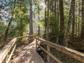 """Photo 19: 38648 CHERRY Drive in Squamish: Valleycliffe House for sale in """"Raven's Plateau"""" : MLS®# R2205403"""