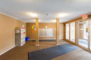 Photo 35: 316 18122 77 Street in Edmonton: Zone 28 Condo for sale : MLS®# E4235304