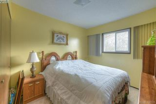 Photo 17: 4383 Majestic Dr in VICTORIA: SE Gordon Head House for sale (Saanich East)  : MLS®# 837692