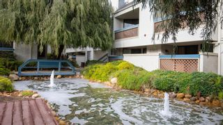 Photo 17: MISSION VALLEY Condo for sale : 2 bedrooms : 2236 River Run Dr #233 in San Diego