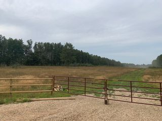 Photo 11: RR 275 Twp 482: Rural Leduc County Rural Land/Vacant Lot for sale : MLS®# E4261137