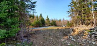 Photo 12: 5248 Port Morien Drive in Round Island: 207-C. B. County Vacant Land for sale (Cape Breton)  : MLS®# 202120892