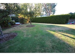 Photo 18: 4814 Sunnygrove Pl in VICTORIA: SE Sunnymead House for sale (Saanich East)  : MLS®# 621327