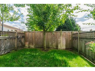 """Photo 19: 42 18681 68 Avenue in Surrey: Clayton Townhouse for sale in """"CREEKSIDE"""" (Cloverdale)  : MLS®# R2400985"""