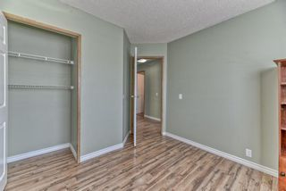 Photo 16: 262 Martinwood Place NE in Calgary: Martindale Detached for sale : MLS®# A1123392